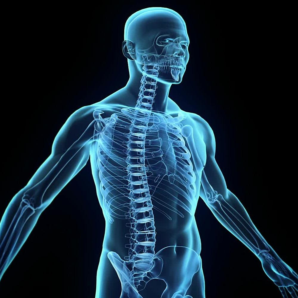 Terapie Bowen Dr. Claudia Gyalai - Timisoara